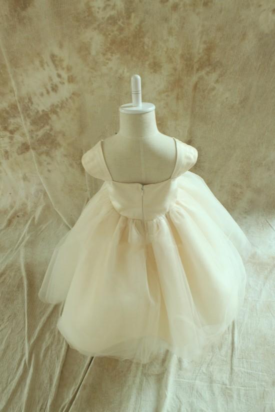 Ball Gown Flower Girl Dresses F010027