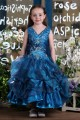 Ball Gown V-Neck Flower Girl Dresses 2050019